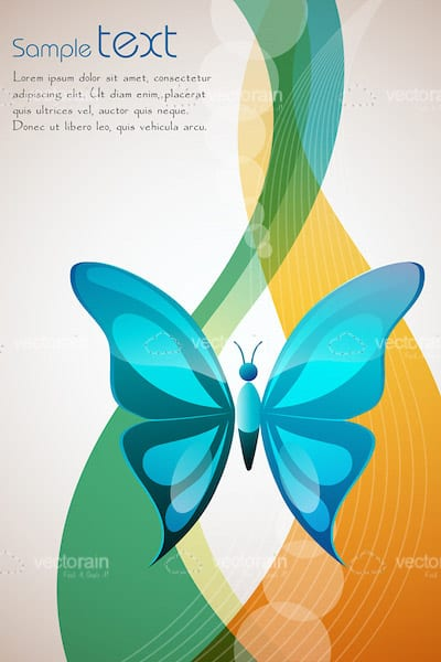 Butterfly on abstract background